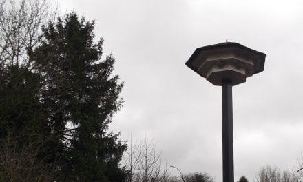 Zwaluwen kunnen nestelen bij De Tille